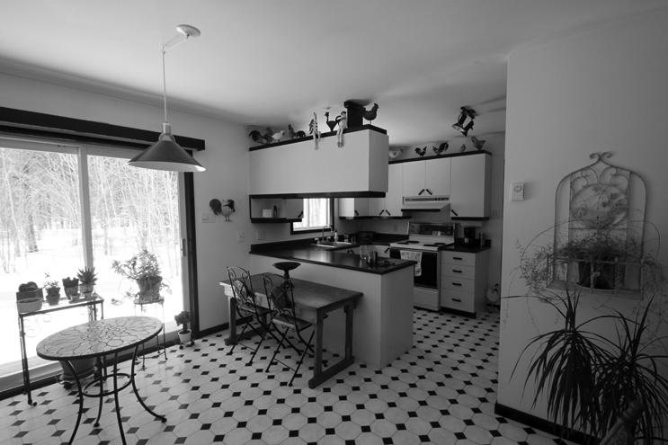 000-Maison-Terrebone-SHED-Architecture-Quebec-Canada-Joli-Design.jpg.jpg