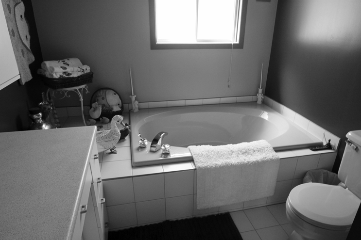 00000-Maison-Terrebone-SHED-Architecture-Quebec-Canada-Joli-Design.jpg.jpg