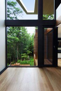 grande-vitre-maison-foret-architecture-design
