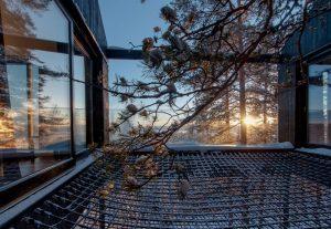 treehotel-design-architecture 04