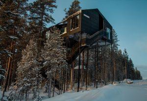treehotel-design-architecture 05
