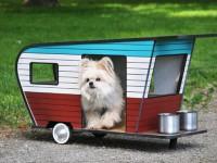 Des niches dans un style caravane pour votre chien
