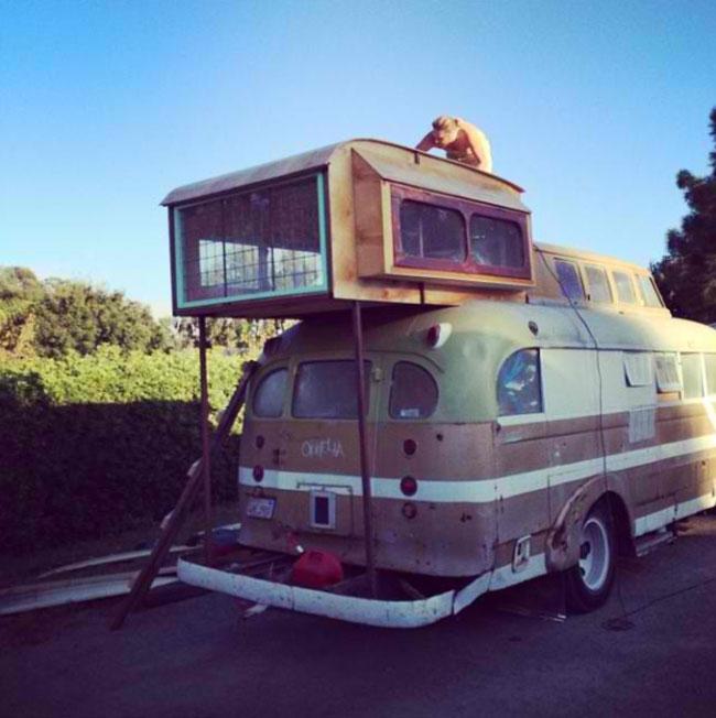 Ophelia-Bus-DIY-Home-12