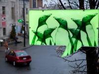 Idée-O-Rama 2014 – Des bulles illuminées présentant les jolies illustrations de Mireille St-Pierre & Michel Hellman tout le long de L'Avenue Mont-Royal