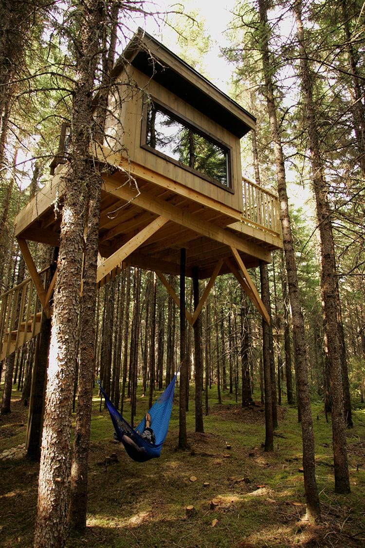 Dormir dans une cabane dans la forêt - Kabania offre un ...