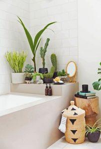 design-plantes-interieur-decoration-12