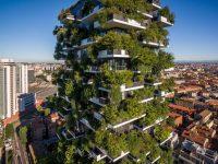 La première forêt verticale pour diminuer la pollution à Nanjing en Chine